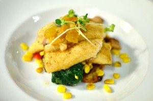 Pan roasted Carolina rainbow trout with zucchini cakes, roasted corn, house bacon, and peach compote