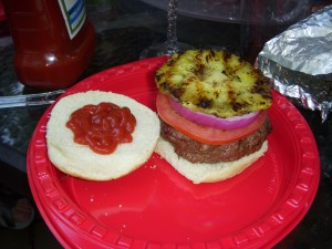 Burger with tomato, red onion, grilled pineapple, and ketchup